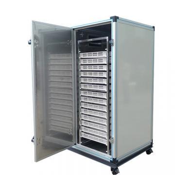 Sweet Potato Stainless Steel Hot Air Fruit Drying Equipment