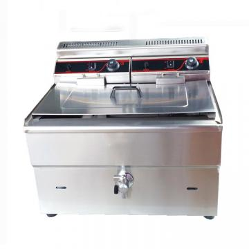 Large Capacity Electric Deep Dry Fat Double Sided Fryer