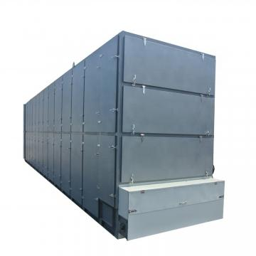 New Type Microwave Vegetable Drying Equipment